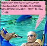 VIIKONLOPPU.png